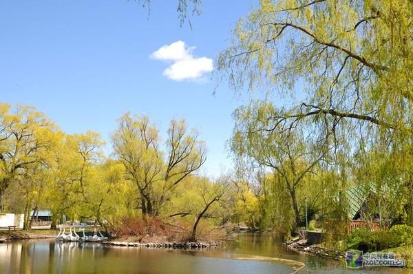 多伦多湖心岛05-加拿大多伦多旅游-zol相册