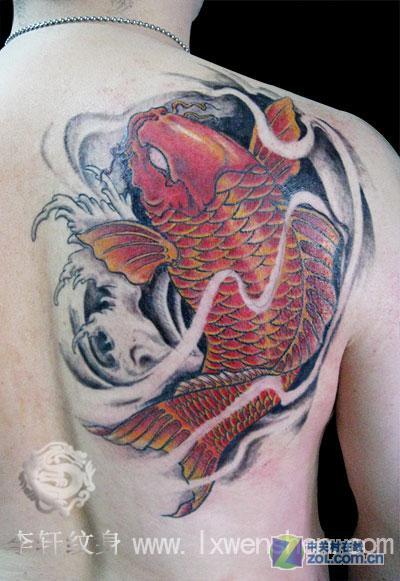 鲤鱼纹身-时尚纹身-zol相册